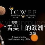 ICWFF_camera_b-roll_video_coverage_shenzhen_local_team_China