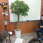 corporate interview in shanghai